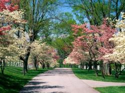 Рыбалка - Непотопляемая леска Чтобы избежать этого