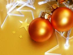 Как правильно посадить ягоду-малину