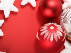 как правильно посадить яблоню осенью схема
