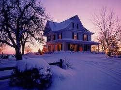 посадка яблони осенью фото