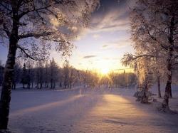 Некрасов стих и про осень