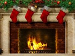 размножение винограда осенью