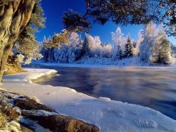 обрезка красной смородины осенью