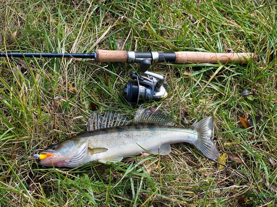 Осенняя ловля судака спиннингом в стоячей воде - Рыбалка на спиннинг