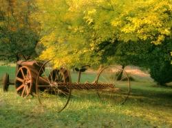 стихи Тютчева о лете