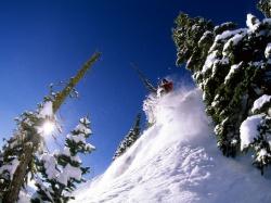 Анна Ахматова стихи о лете