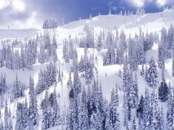 снеток рыба когда ловят