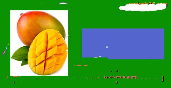 первый манго польза и вред для организма формировние приходно -расходные